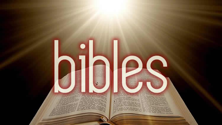 public domain bibles